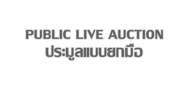 public_live_auction