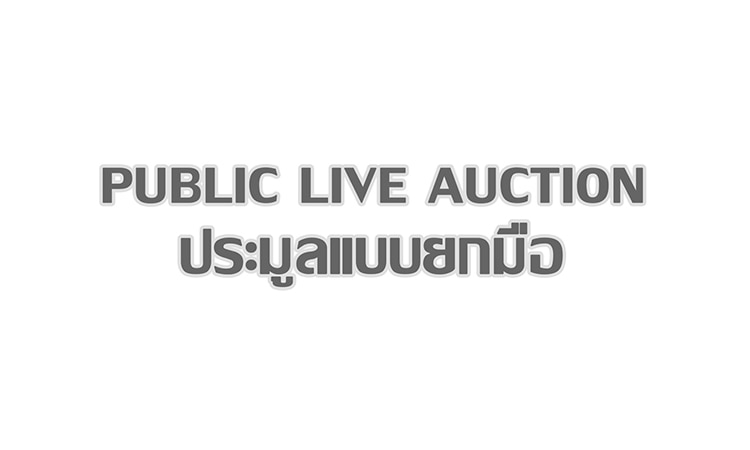Embassy Public Live Auction Cover